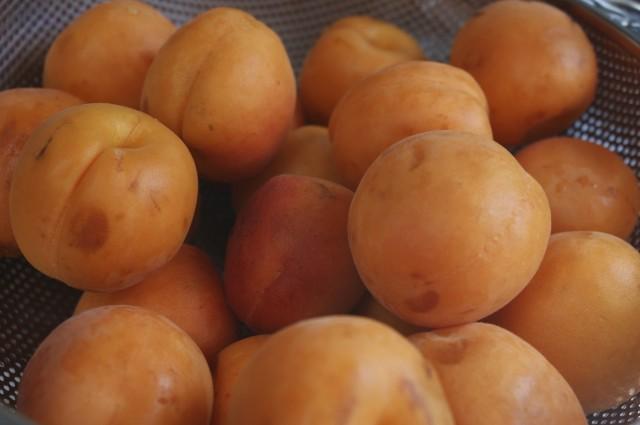 Juicy Belgian apricots