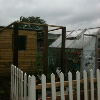 Allotment update: June