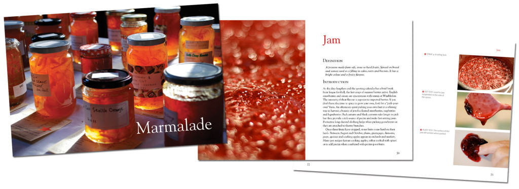 Spread from First Preserves by Vivien Lloyd
