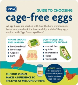 RSPCA guide to cage -ree eggs