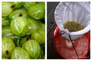 Creating pectin stock using gooseberries