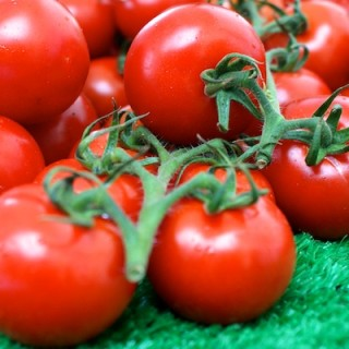 Seasonal tomatoes