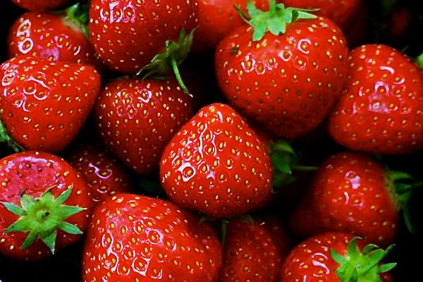 Strawberries in the Feeding Boys kitchen