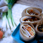 Asian turkey picnic wraps