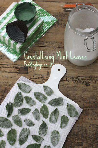 Feeding Boys: Crystallising Mint Leaves