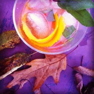 plum_liquor_cocktail