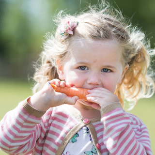 Easy guide: Eating well for toddlers