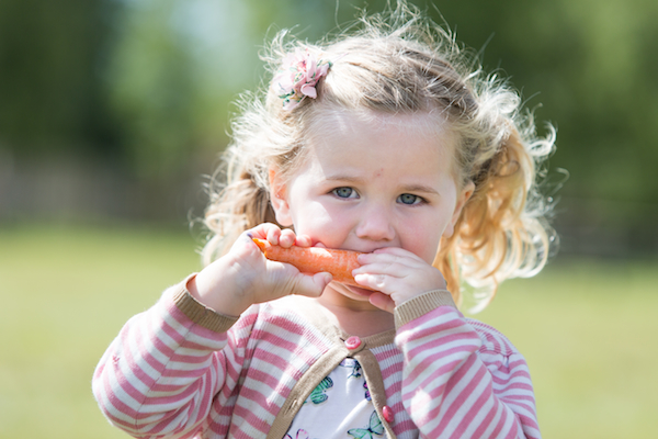 Guide to eating well for Toddlers