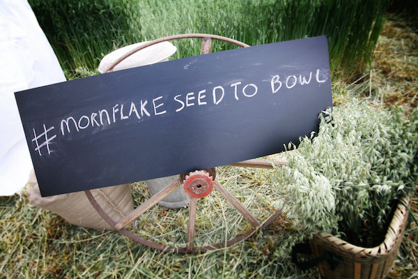 Mornflake Seed To Bowl Event