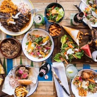 Turtle Bay launches in Newcastle