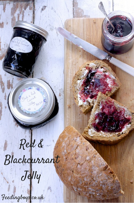 Redcurrant and Blackcurrant Jelly on feedingboys.co.uk