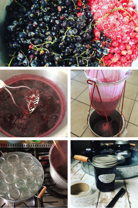 How to make Redcurrant and Blackcurrant Jelly on feedingboys.co.uk