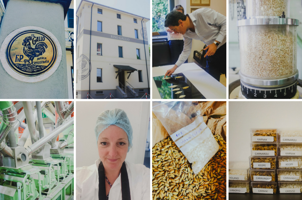 A tour of the Riso Gallo Rice Mill in Italy on feedingboys.co.uk